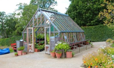 building greenhouse business