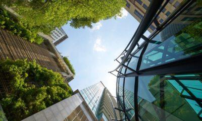 green business profile
