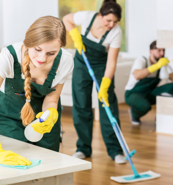 Here Is Why You Should Hire A Professional House Cleaning Service - Green  Building Insider