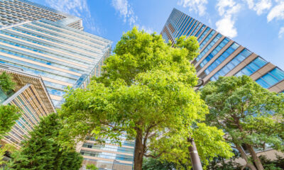 green building stocks to follow