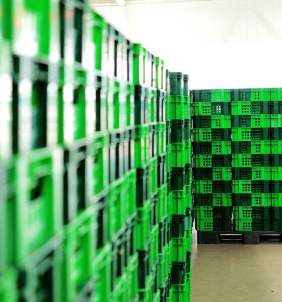 going green with your warehouse