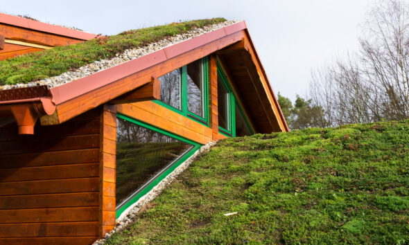green roofing ideas