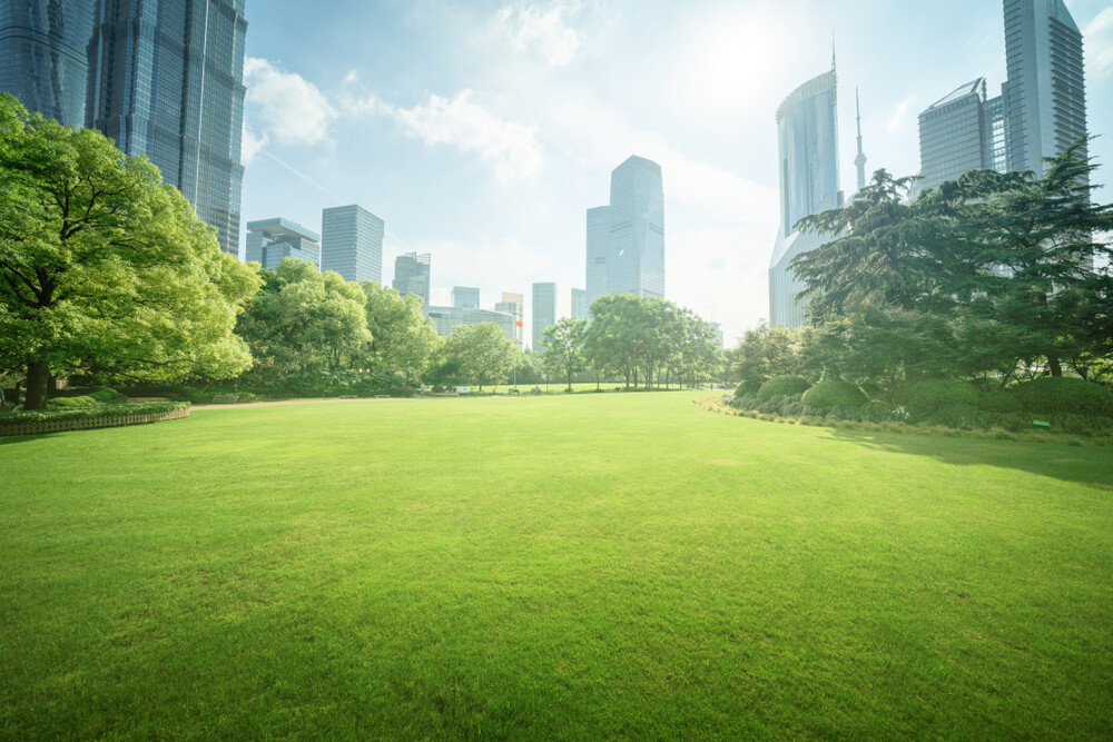 How COVID-19 Is Actually Making Cities Greener