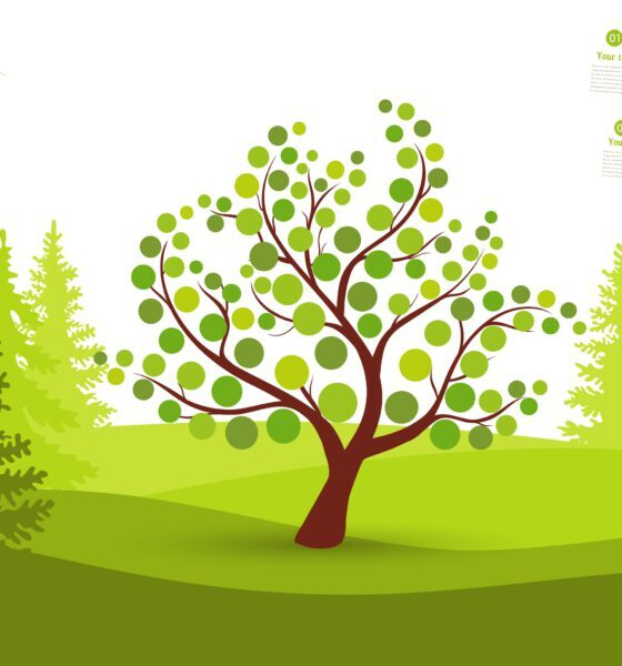 how to grow eco-friendly garden