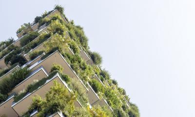 sustainable architecture and sustainable design books
