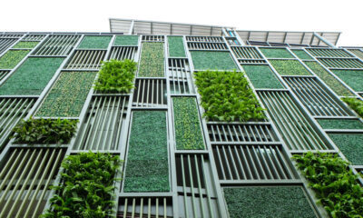 sustainable development requires green businesses