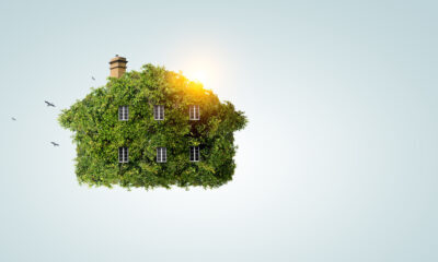 essentials for eco-friendly construction companies