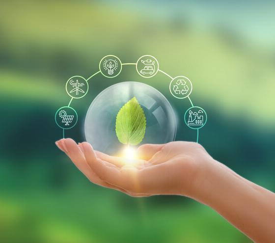 eco-developments around the world