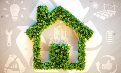 eco-friendly construction ideas