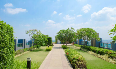 eco-friendly summer backyard design